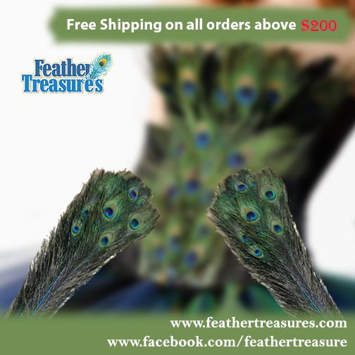 Get the benefit of free shipping on purchase orders above $200.