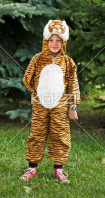 a child in tiger costume - Image of a child in tiger costume