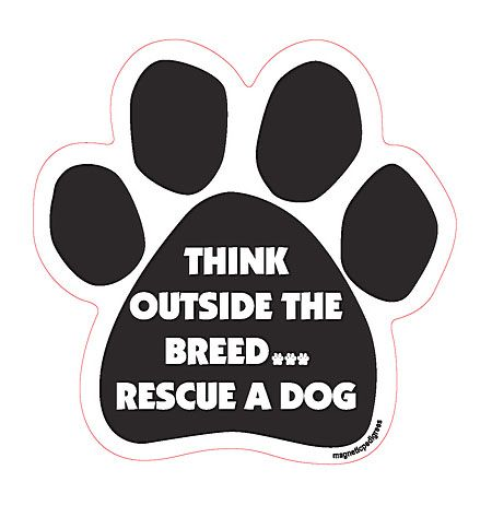Stop buying puppies from backyard breeders. Be apart of the solution rather than the problem. Adopt and save a life.