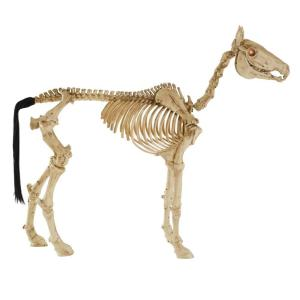 Home Accents Holiday 5 Ft Animated Led Haunted Hearse With Skeleton 2031 60066 The Home Depot In 2020 Halloween Outdoor Decorations Halloween Scene Halloween Miniatures