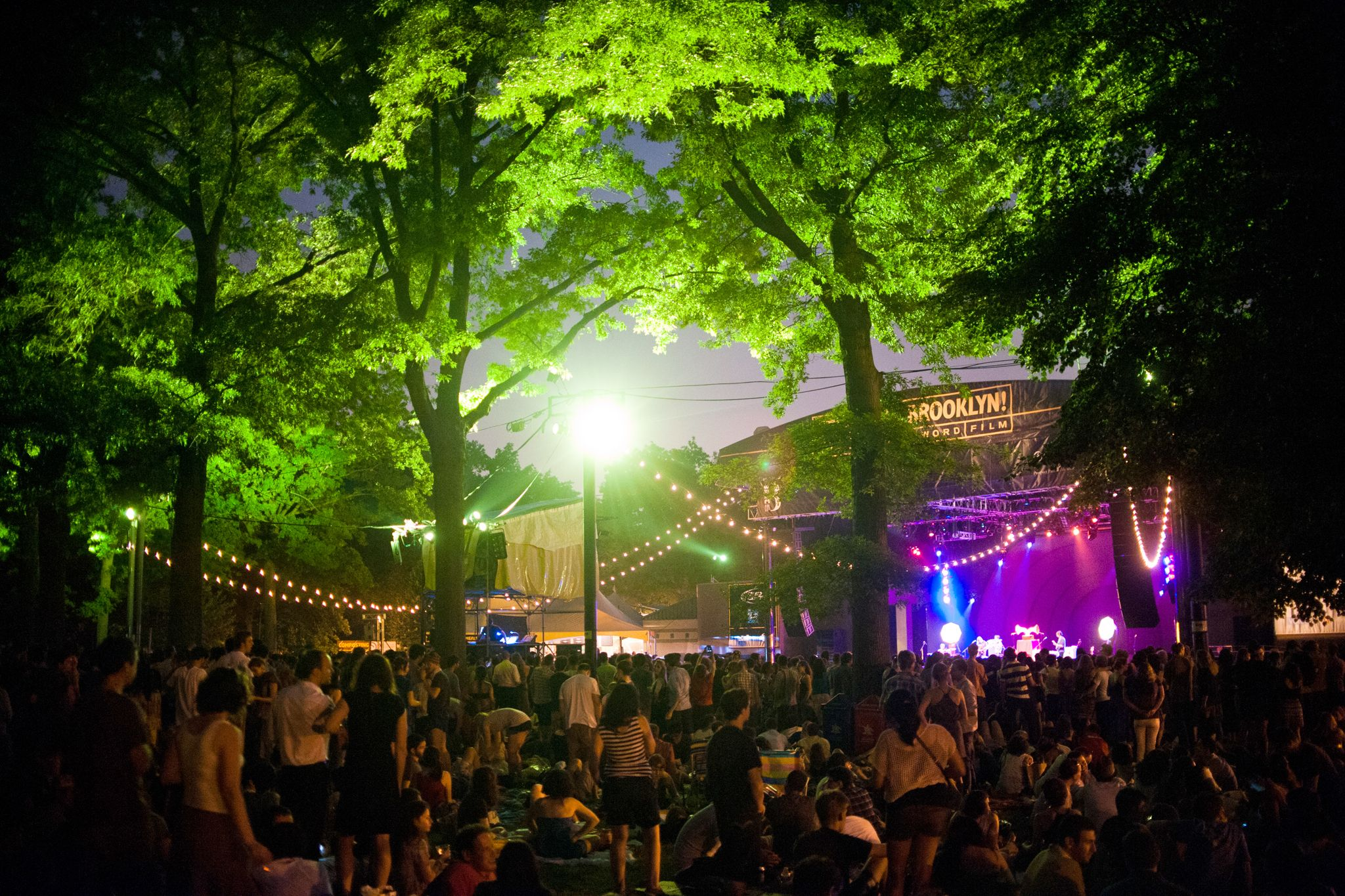Your Guide To Bric Celebrate Brooklyn 2019 Summer Music Festivals Amazing Adventures Night Photography