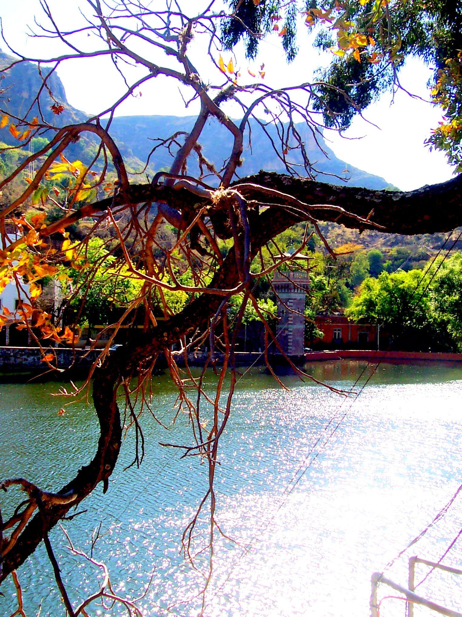 Presa Guanajuato Mexico Beautiful Lakes River Lake