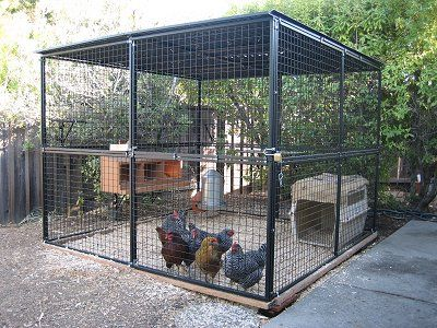 Customer Dog Kennels Photos Dog Kennel Reviews And