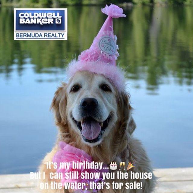 Happy Birthday Herather Its My Birthday Water House Happy