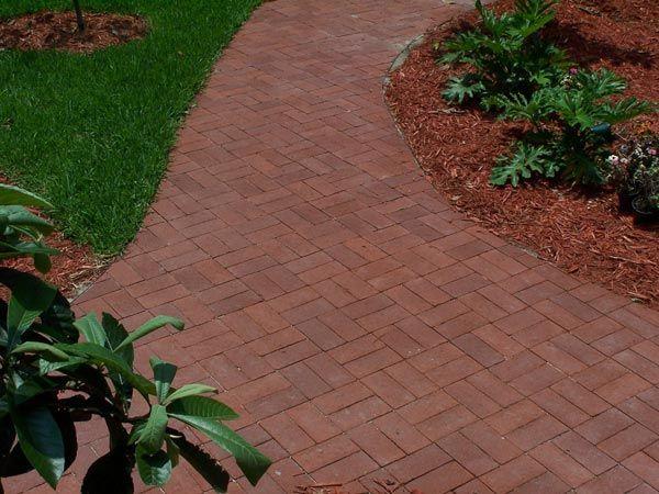 Low Maintenance Front Garden Ideas Driveways Lawn