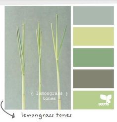 Olive green color combinations google search color for Olive green colour combination