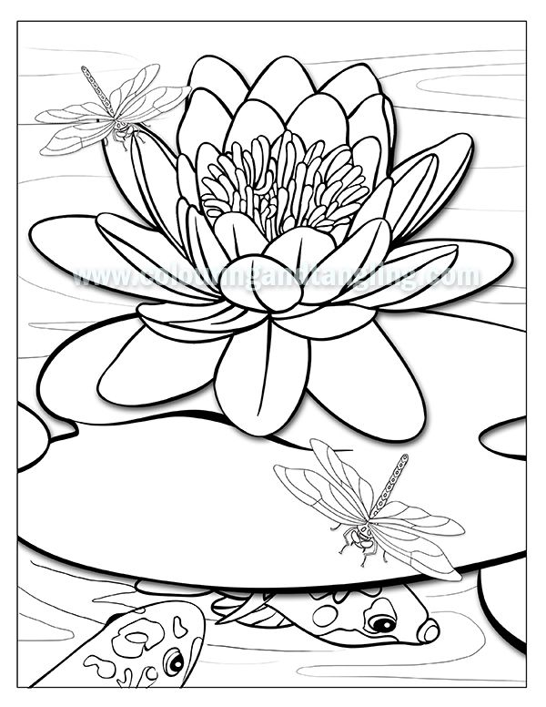 colouring pages of koi fish | Color me | Pinterest | June and ...