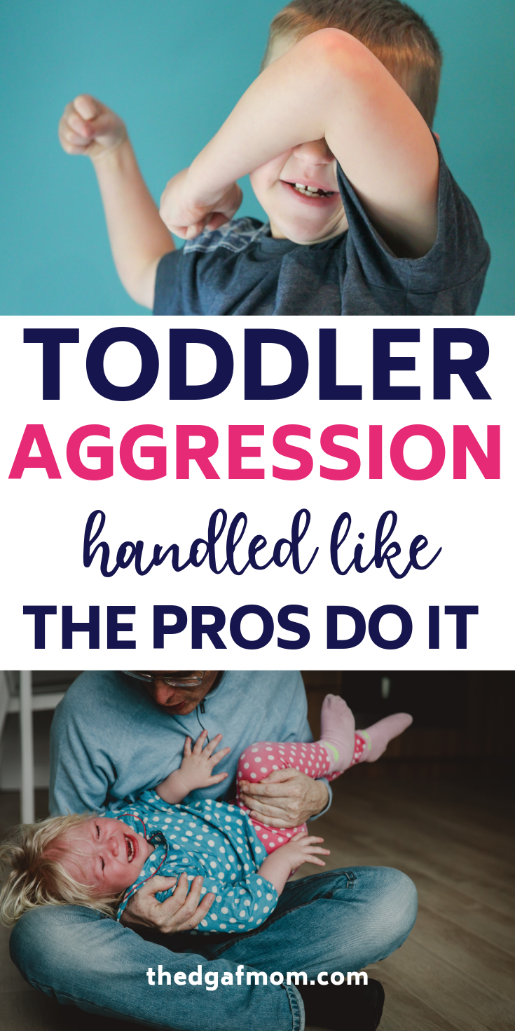 Toddler Hitting, Biting, Pinching, Throwing, Pushing, and Kicking, Oh My! How to Deal With Aggressive Toddler Behavior — The DGAF Mom