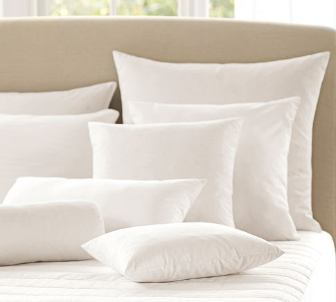 Pottery Barn Pillow Inserts Endearing Feather Pillow Insert  Pillow Inserts Barn And Pillows Design Decoration