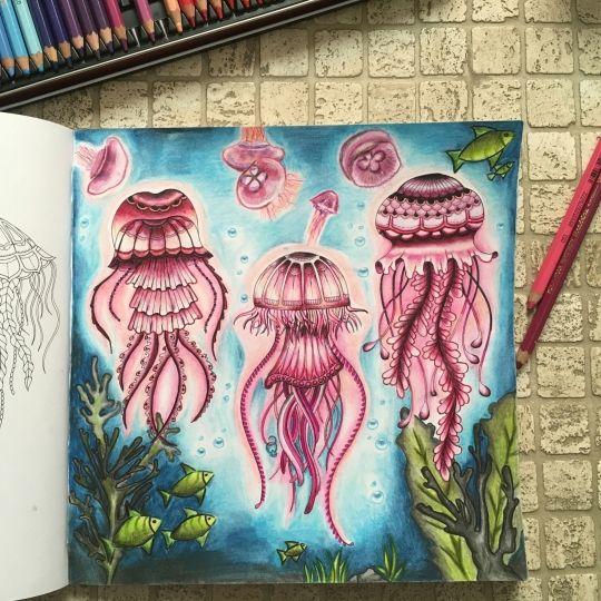 The 25 Best Johanna Basford Coloring Book Ideas On Pinterest