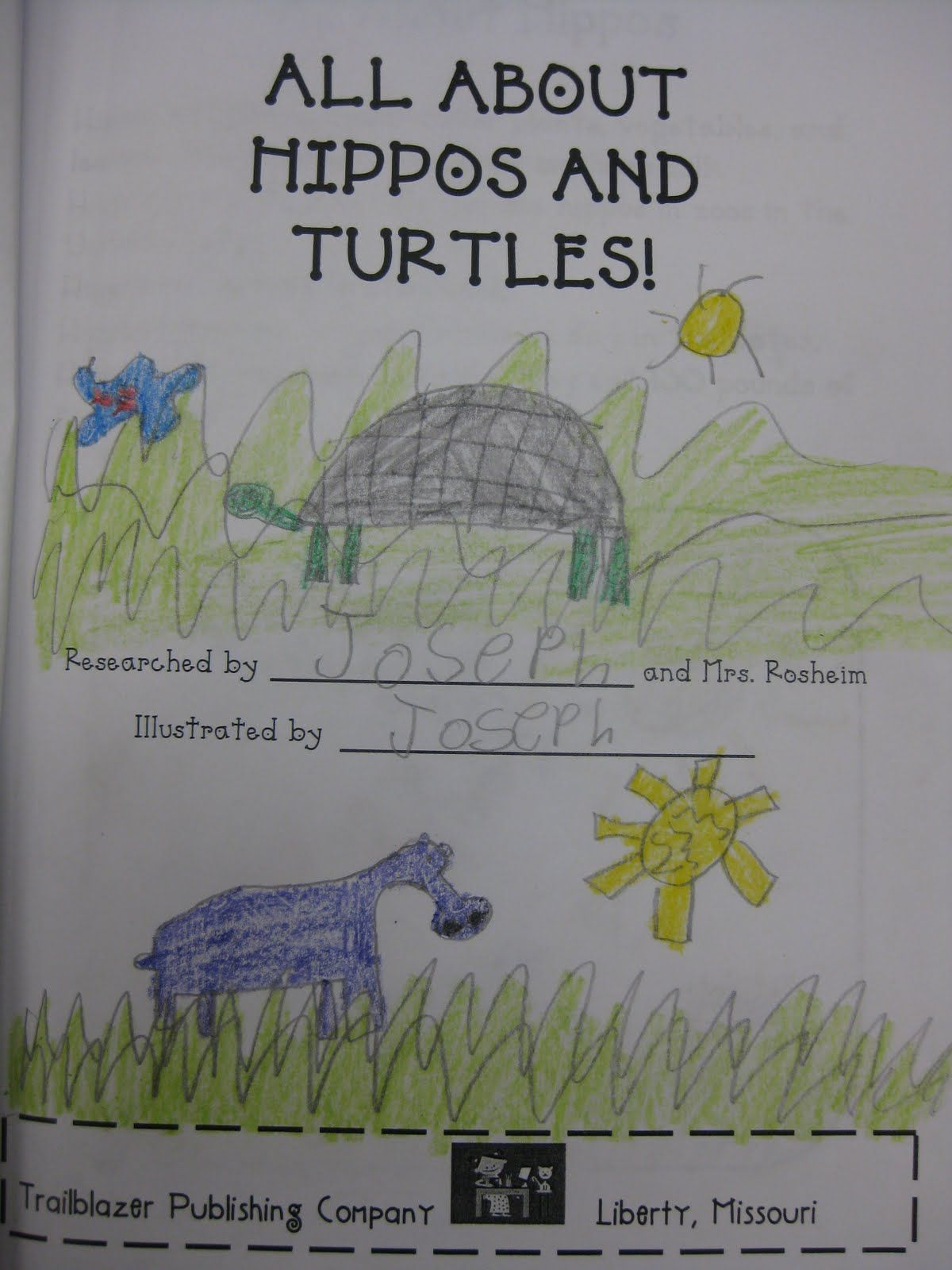 Kindergarten Research Project On Hippos And Turtles Based