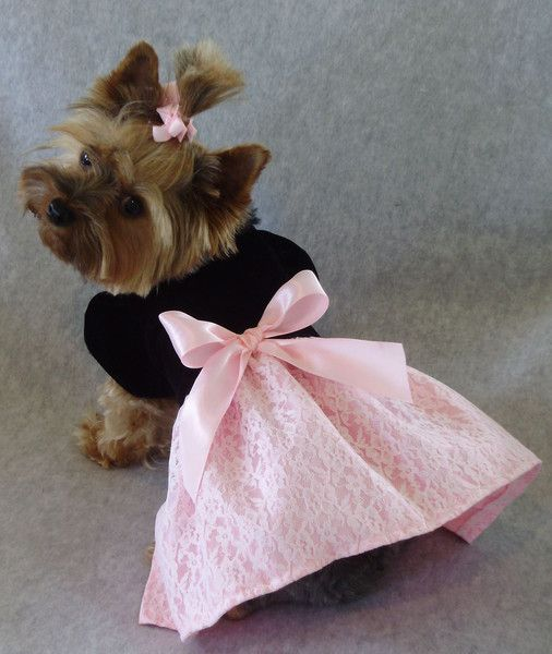 Black Velvet Pink Satin Dress | PC Dog Clothes | Pinterest | Pink ...