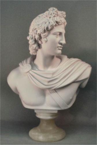 Apollo Belvedere Bust Marble 22 High Bust Sculpture Roman Sculpture Sculpture