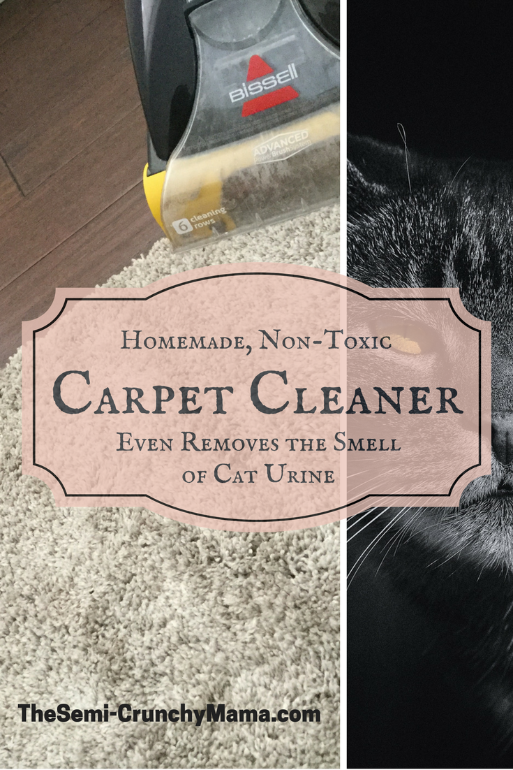 Non Toxic Carpet And Upholstery Cleaner That Even Gets Rid Of Cat