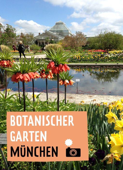 Trend Liczba pomys w na temat Garten M nchen na Pintere cie najlepszych Vaterstetten Hofgarten m nchen i Schwimmteich