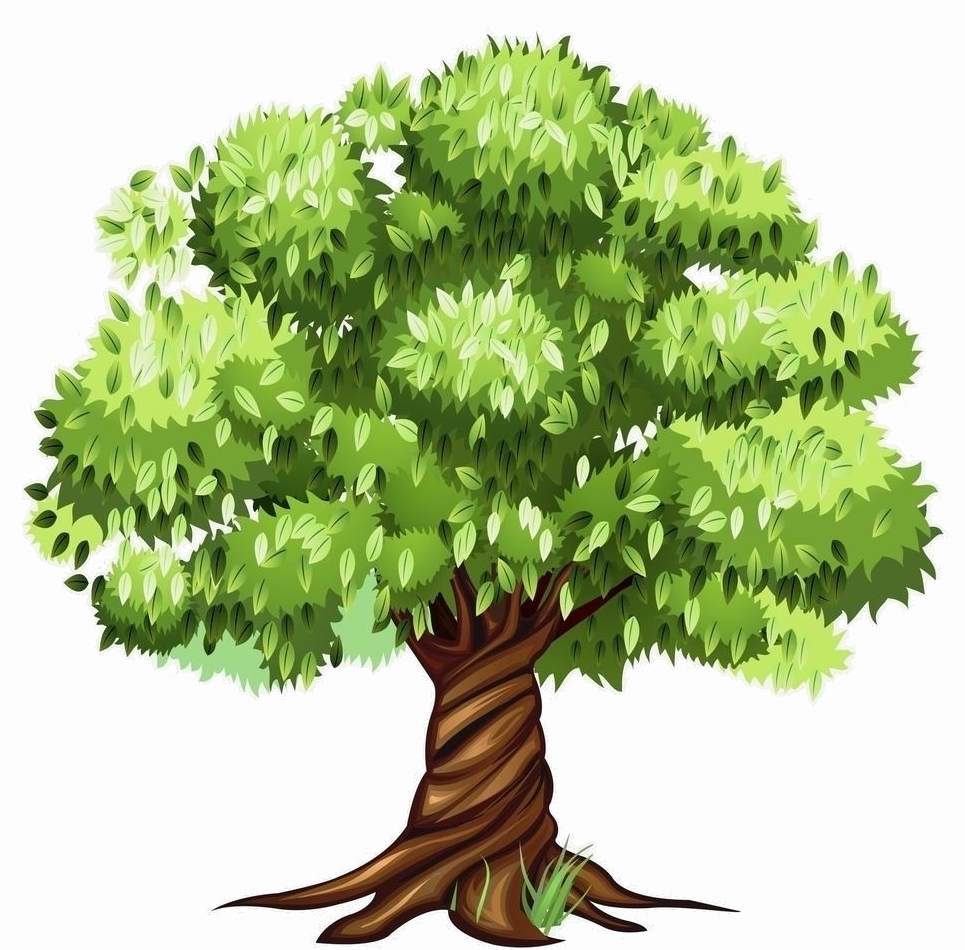 мгновения картинка большого дерева в рисунках корешков вовсе