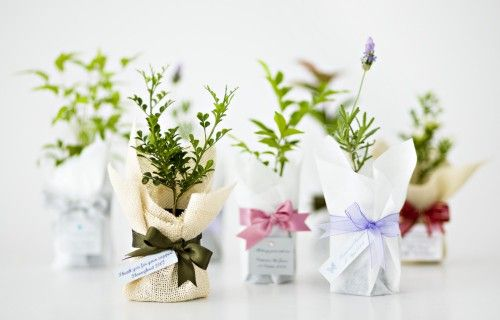 Wedding Gifts Sydney: Corporate & Other Occasions