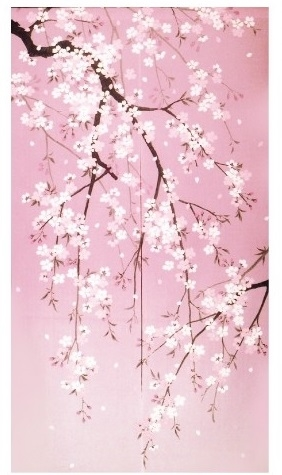 Noren Weeping Cherry Blossoms Cherry Blossom Art Cherry Blossom Painting Cherry Blossom Wallpaper