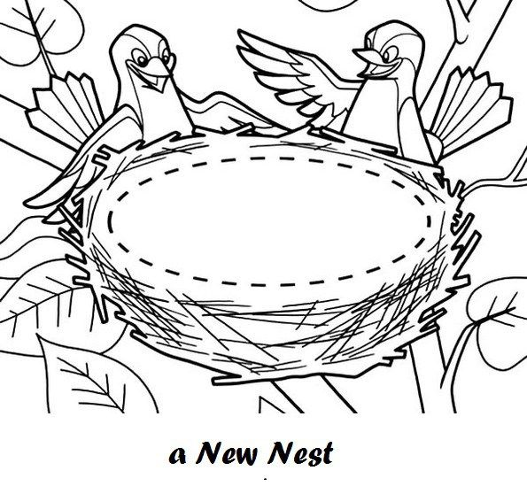 Bird And New Nest Coloring Sheet Coloring Pages Animal Coloring