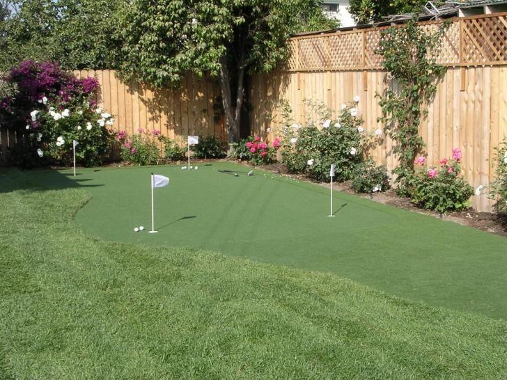 anybody build their own backyard putting green? | Backyard ...