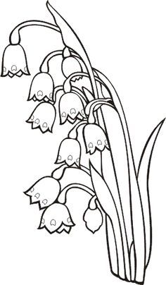 Snowdrop Coloring Page Supercoloring Com Coloring Pages Free Printable Coloring Pages Printable Coloring Pages