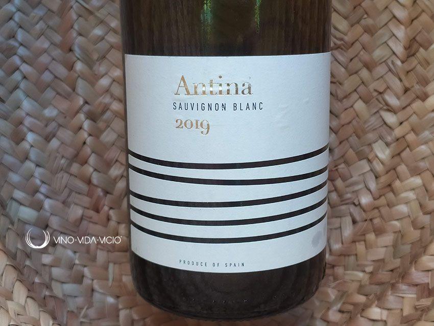 Antina Sauvignon Blanc 2019 De Aldi España Sauvignon Sauvignon Blanc Vino