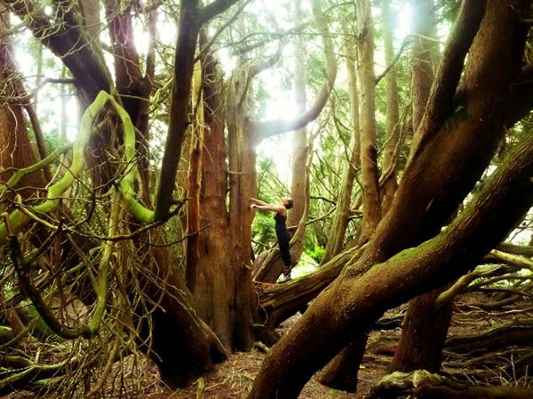 Taken By Trees: UT Study Abroad Photo Contest   Adventures ...