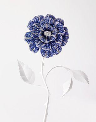 Barbara Donninelli - Photos - VOGUE NIPPON - Paradise Jewellery | Michele Filomeno