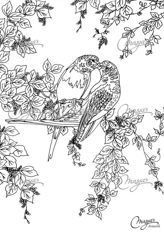 Masjas Lovebirds Coloring Page Made By Masja Van Den Berg Featuring 1 Hand Drawn Design For You T Coloring Pages Adult Coloring Animals Animal Coloring Pages