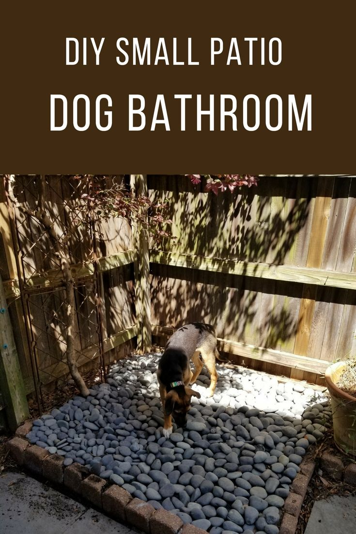 Outdoor Patio Dog Beds: DIY Small Patio Dog Bathroom! Easy To Make Dog Bathroom
