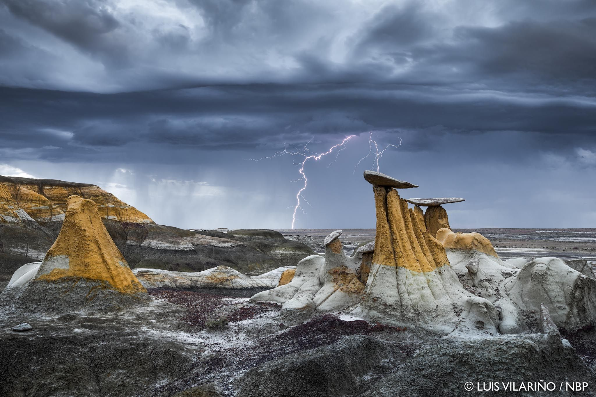 2015 Wsria Winners: Nature's Best Photography Awards