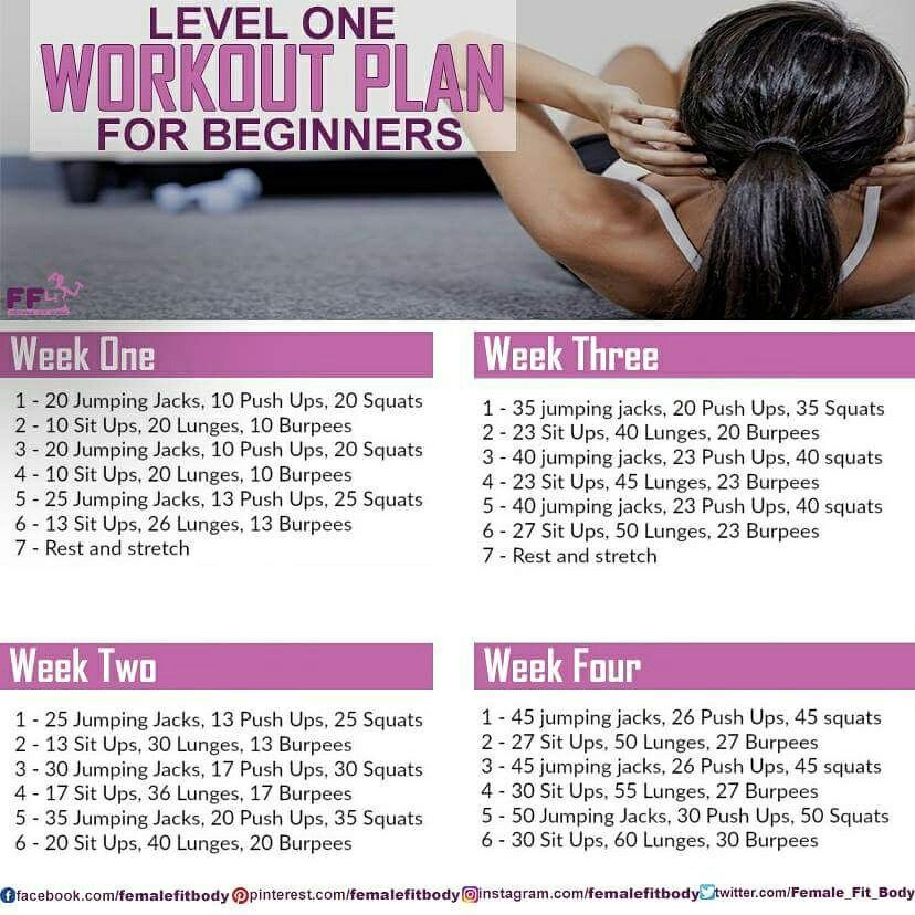 Workout plan for beginners | *Fitness* | Workout plan for
