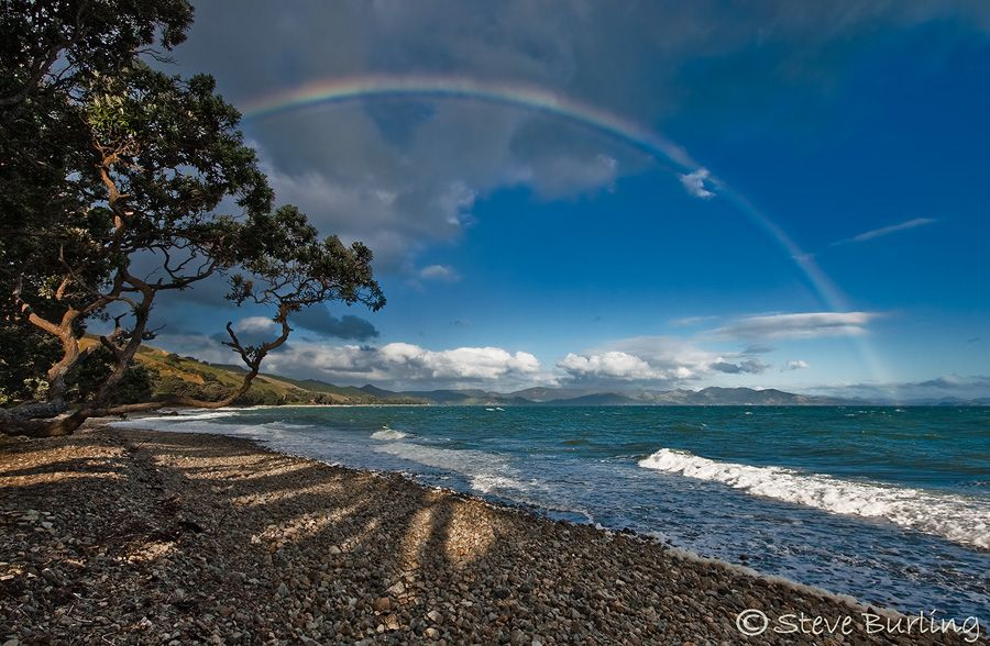 Top 10 Cool Places in New Zealand ~ Travelphant Travel Blog