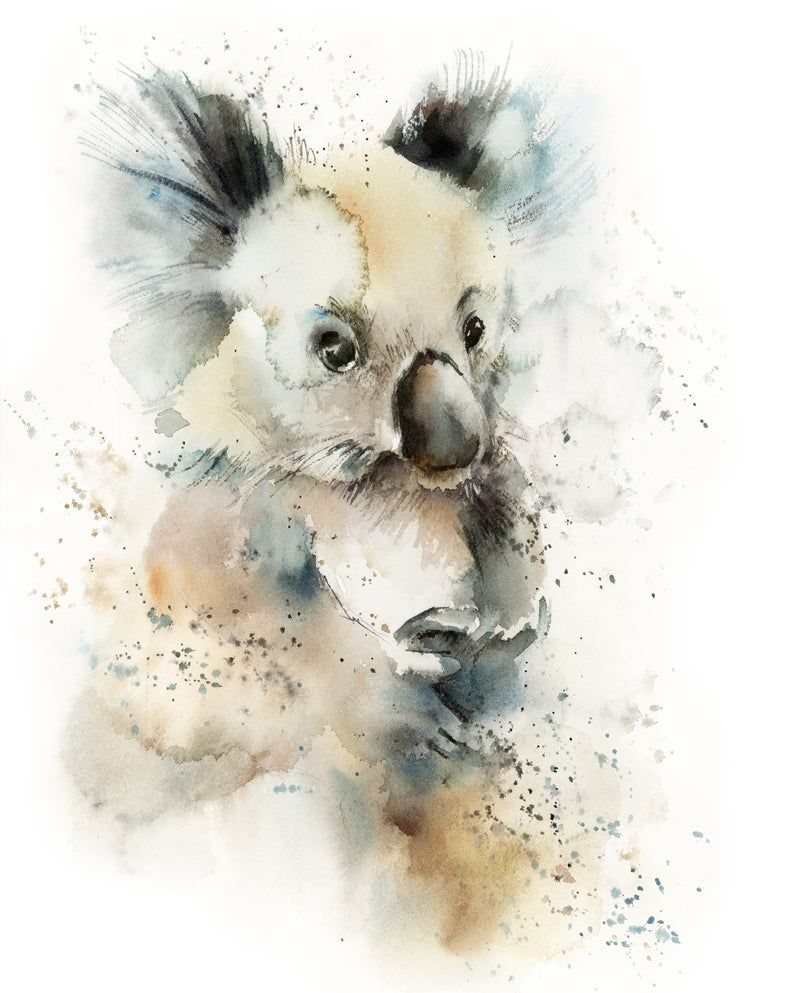 Koala Fine Art Print Koala Watercolor Print In Natural And Blue