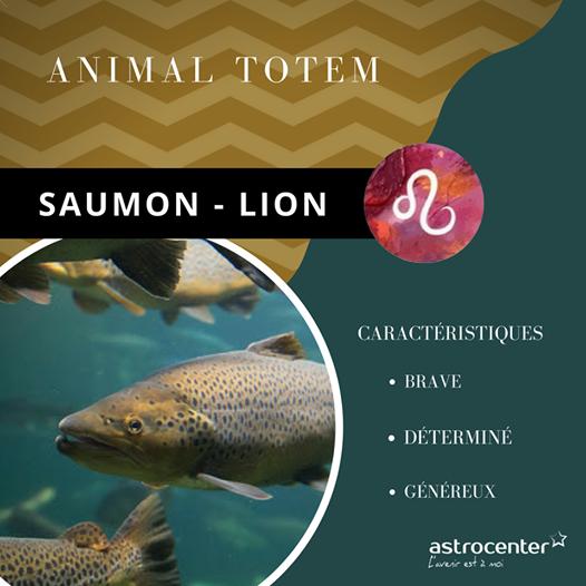 Animal Totem Et Zodiaque Chaque Signe Astro A Son Animal Totem