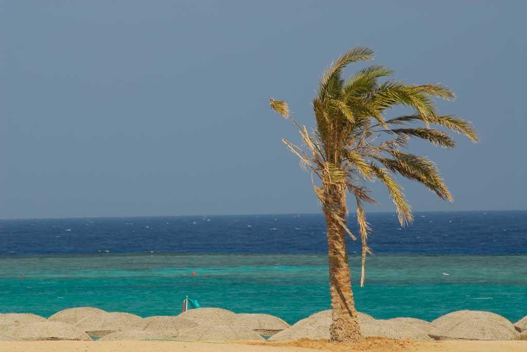 Hotel Gorgonia Beach Resort, dovolena a zájazdy do hotela Marsa Alam - INVIA.SK
