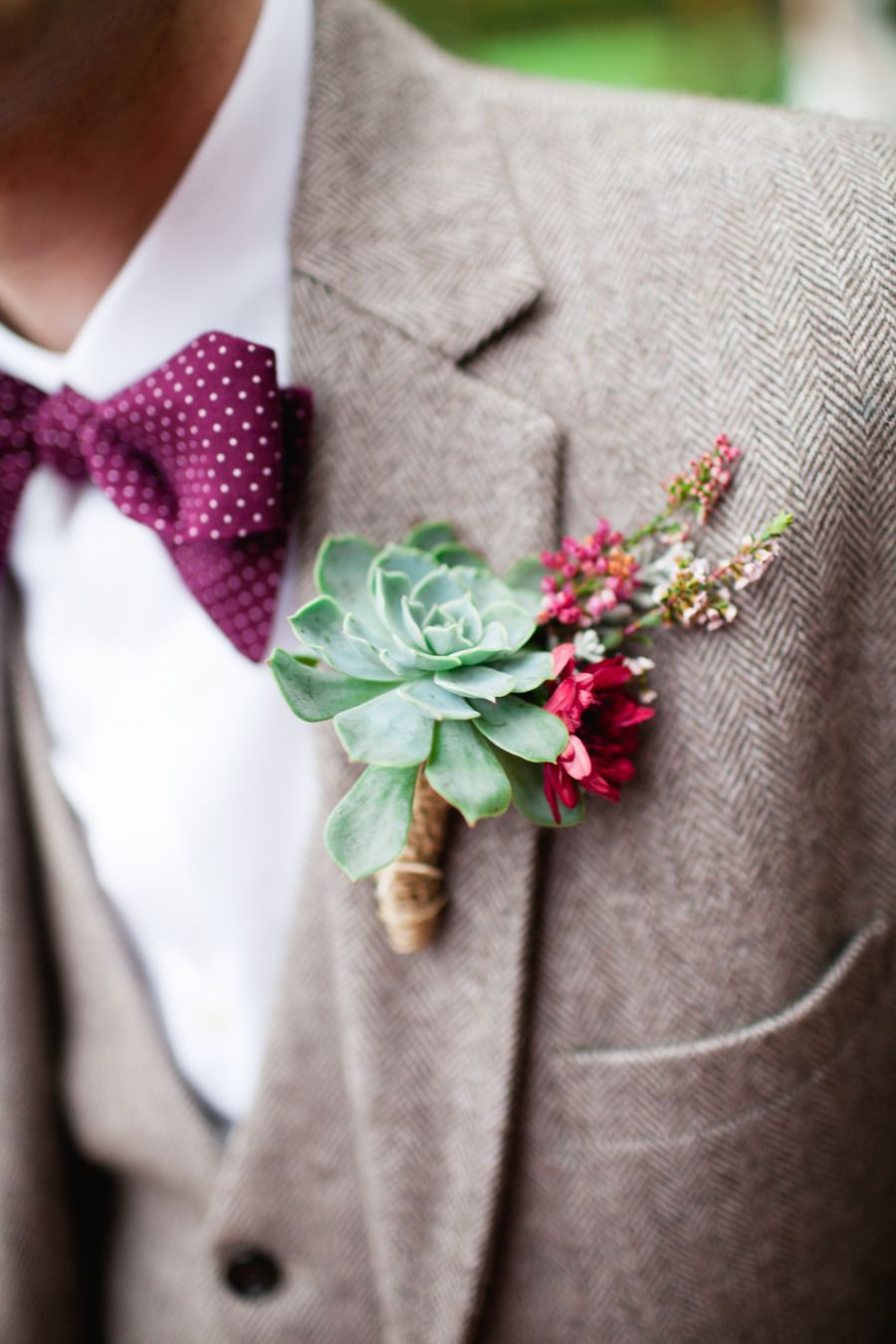 Succulent boutonniere and polka dot bow-tie. Photography- lovely colours for a Fall wedding. Corina V. Photography - corinavphotography.com/