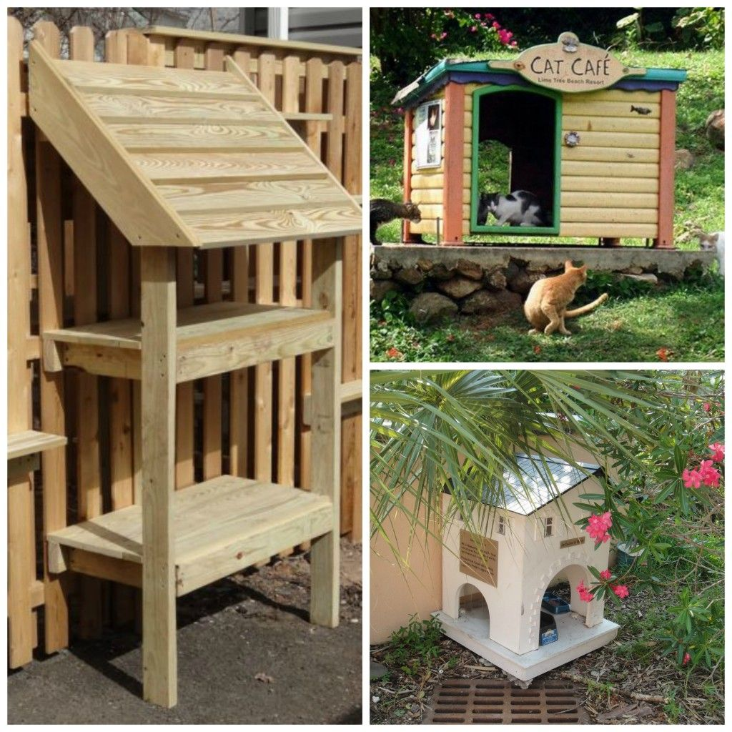 Muebles Gatos Feeding Stations For Feral Stray Cats Cat Anddog