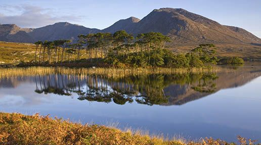 Co. Galway, Connemara, known for its wild beauty, is located north of Galway City, at the western tip of the county. It is one of the most unspoiled regions of Ireland and a vibrant Irish-speaking area.
