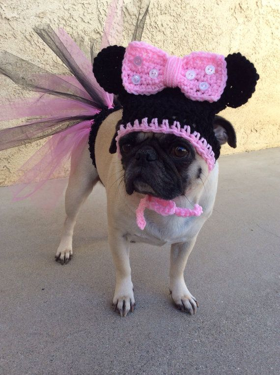 01868fe8c66 Pug-Tutus for Dogs-Pink Tutu-Dog Tutu-Minnie Hat-Hats For Dogs-Pugs ...