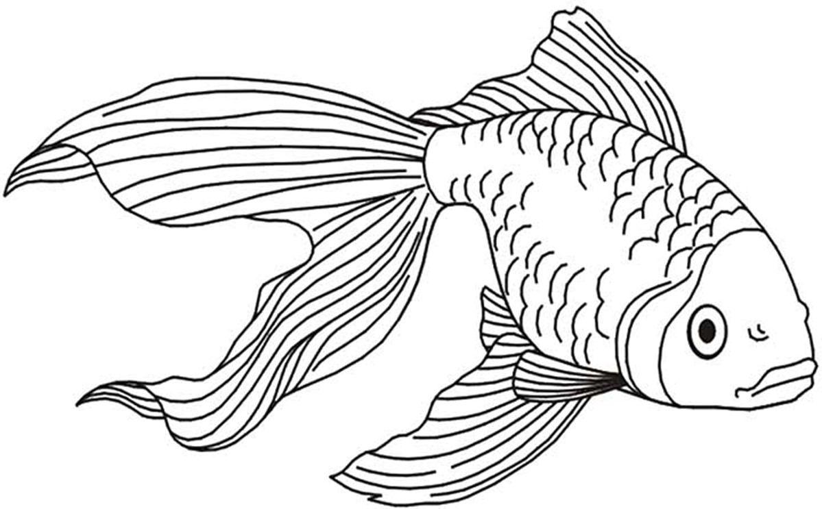 Dessin poisson lilo dessin poisson dessin poisson - Poisson dessin ...
