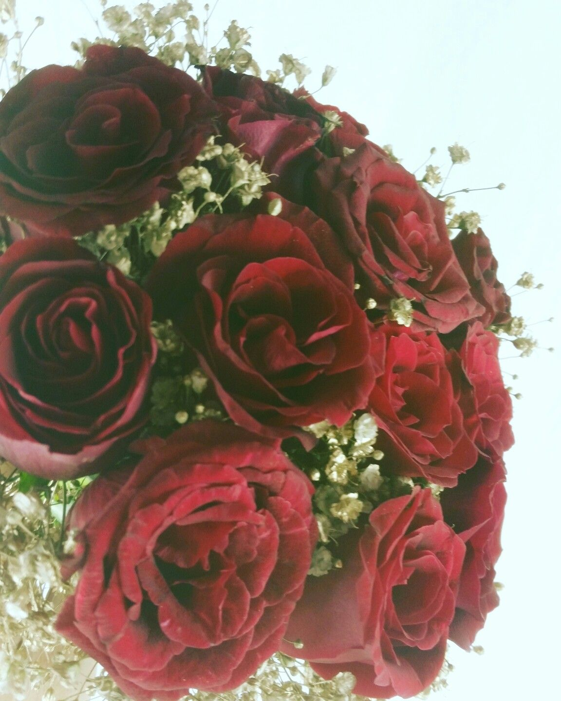 florist flower flowers flowerdelivery floristdelivery