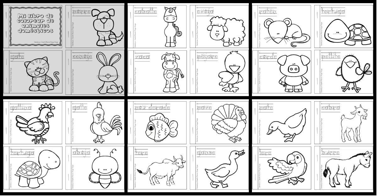 Pagina Para Colorear De Zoo: Mi Libro De Colorear De Animales Domesticos PORTADA