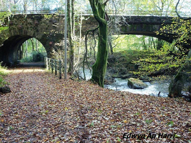 Ein wunderschoener Herbsttag verewigt bei Edwyn Ap Harri A beautiful Autumn Day captured by Edwyn ap Harri