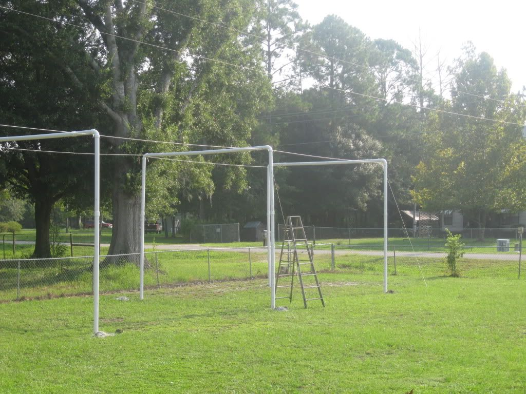 pvc batting cage | living at the whitehead's zoo | pinterest