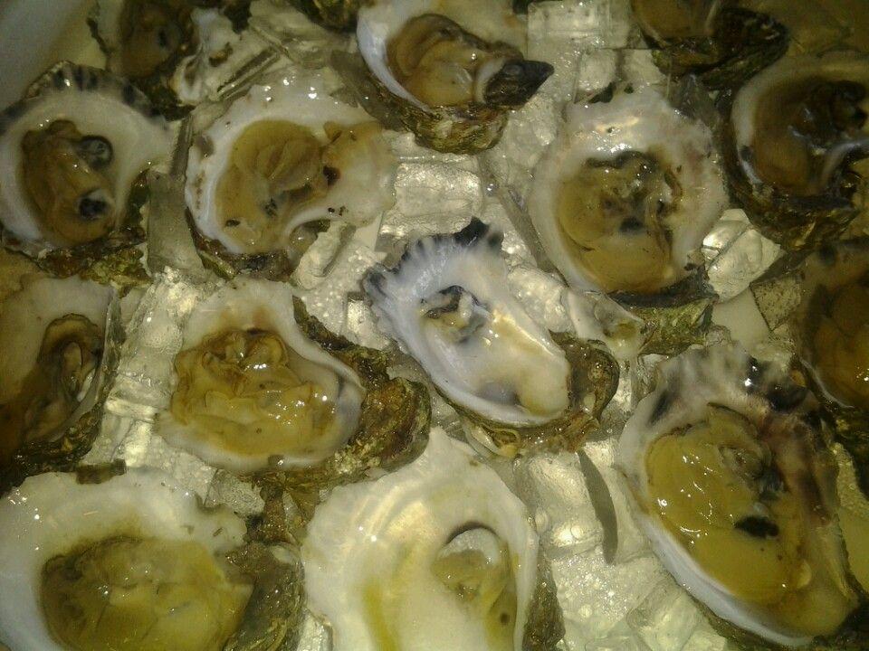 ClawDaddy's Raw Bar & Grill seafood in Crystal River