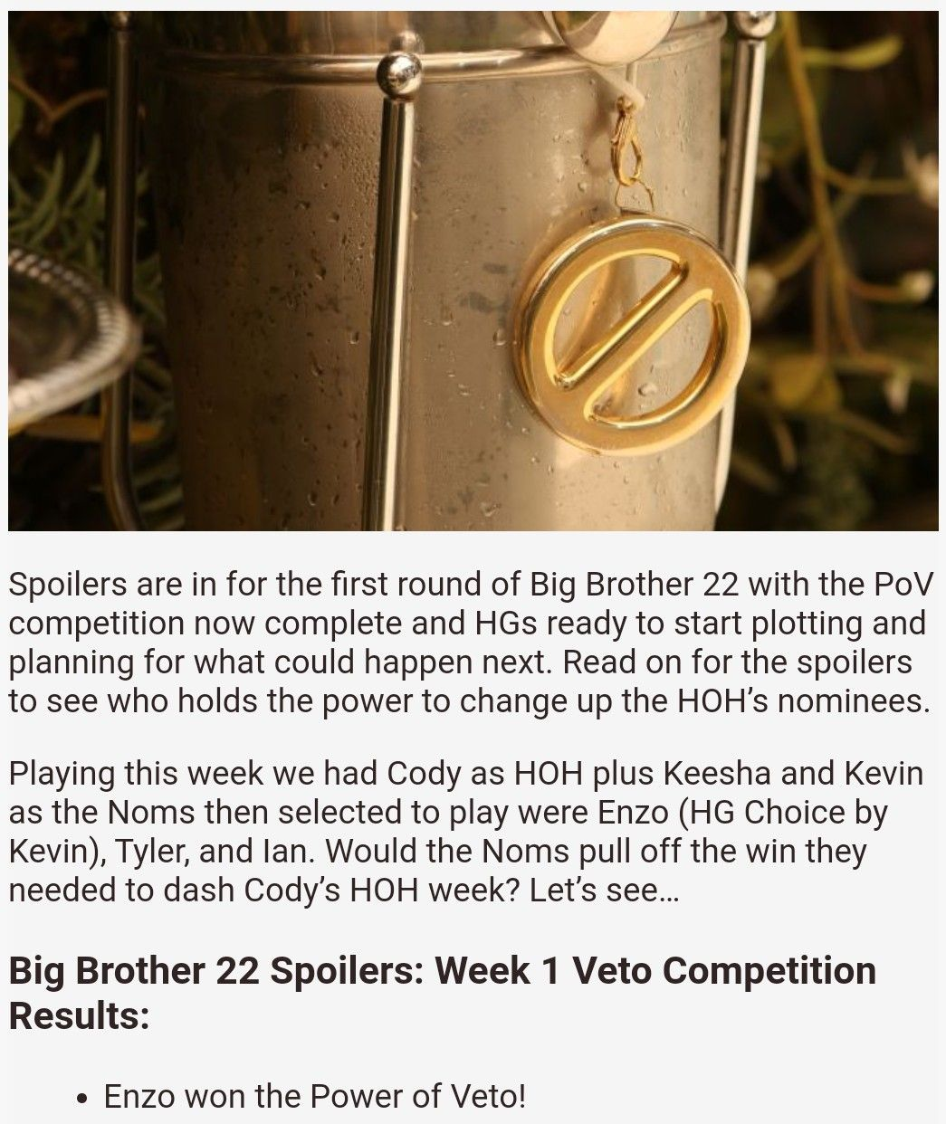 Pin By Hoff On Big Brother 22 Allstars In 2020 Big Brother 20 Big Brother Gold Rings