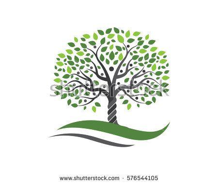 Family Tree Symbol Icon Logo Design Template Ring Ideas