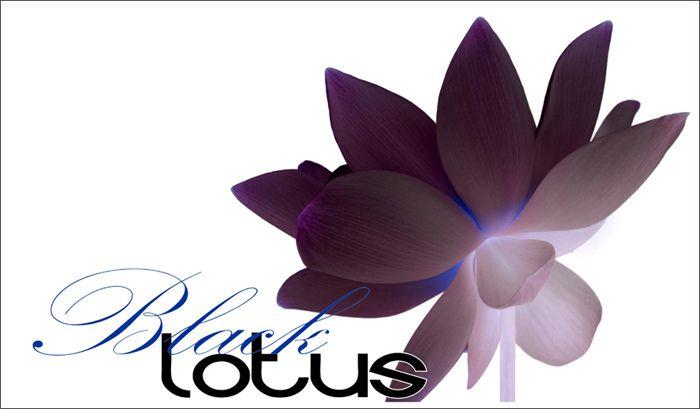 Black Lotus - BlackLotus-30-0700