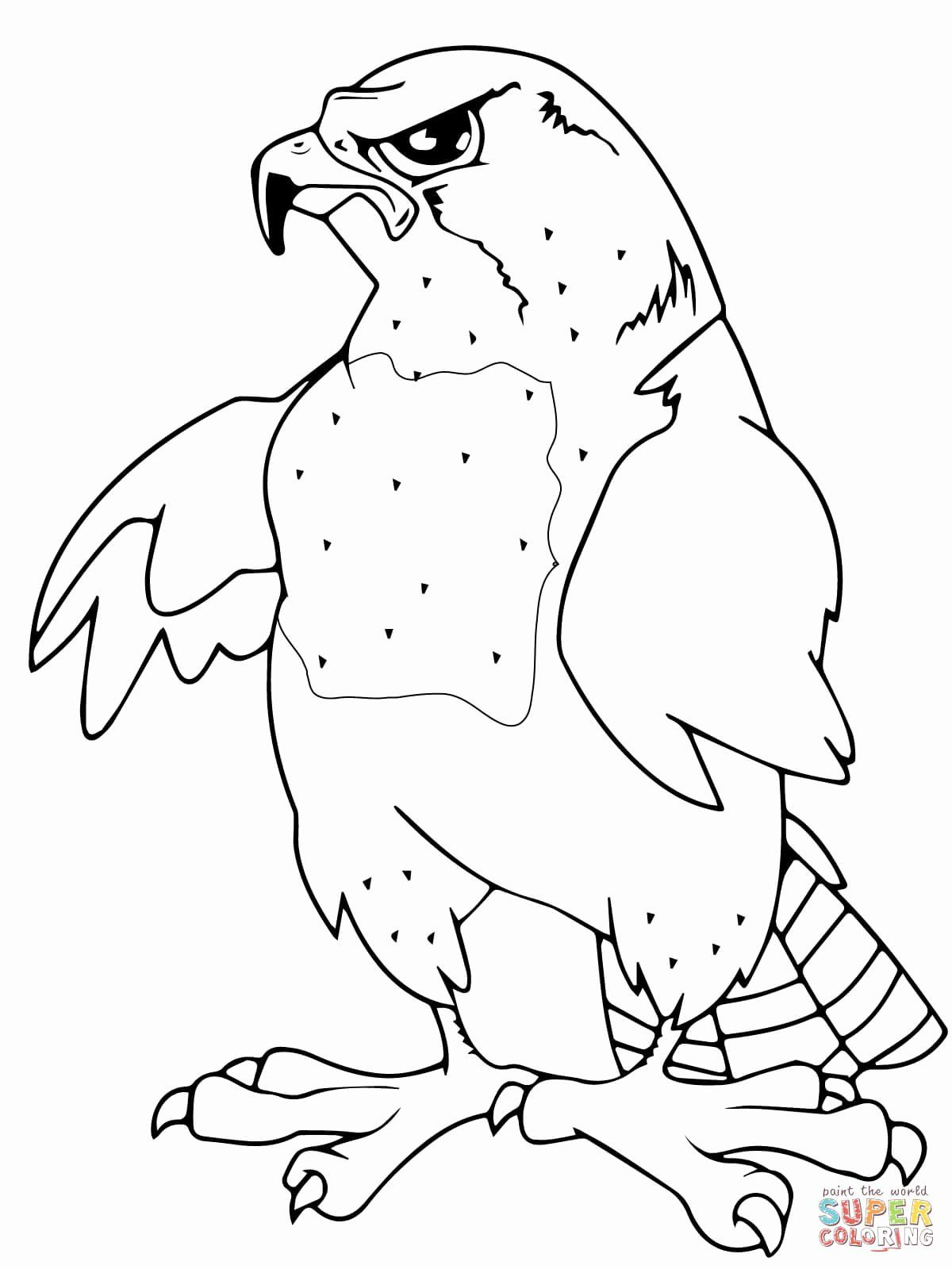 Peregrine Falcon Coloring Page Awesome Falcons Coloring Pages Coloring Pages Peregrine Falcon Coloring Pages Inspirational